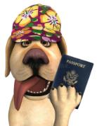 С собакой в отпуск за границу? Это реально!