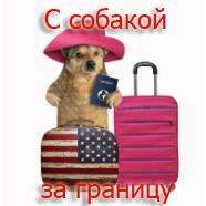 С Собакой За Границу